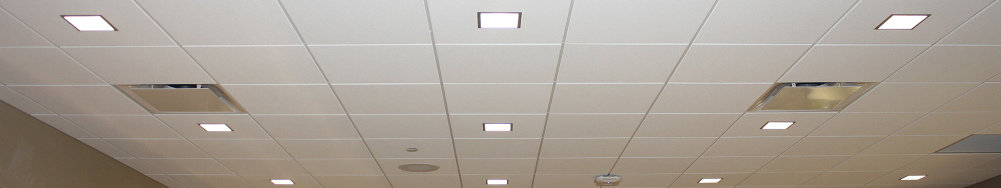 Traditional Accoustical Ceiling Tiles